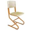 Детские кресла - Дэми (Россия) - эргономичный стул для школьников