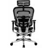 Кресла для руководителя - ERGOHUMAN Plus (Тайвань) - Эргономичное кресло для руководителя